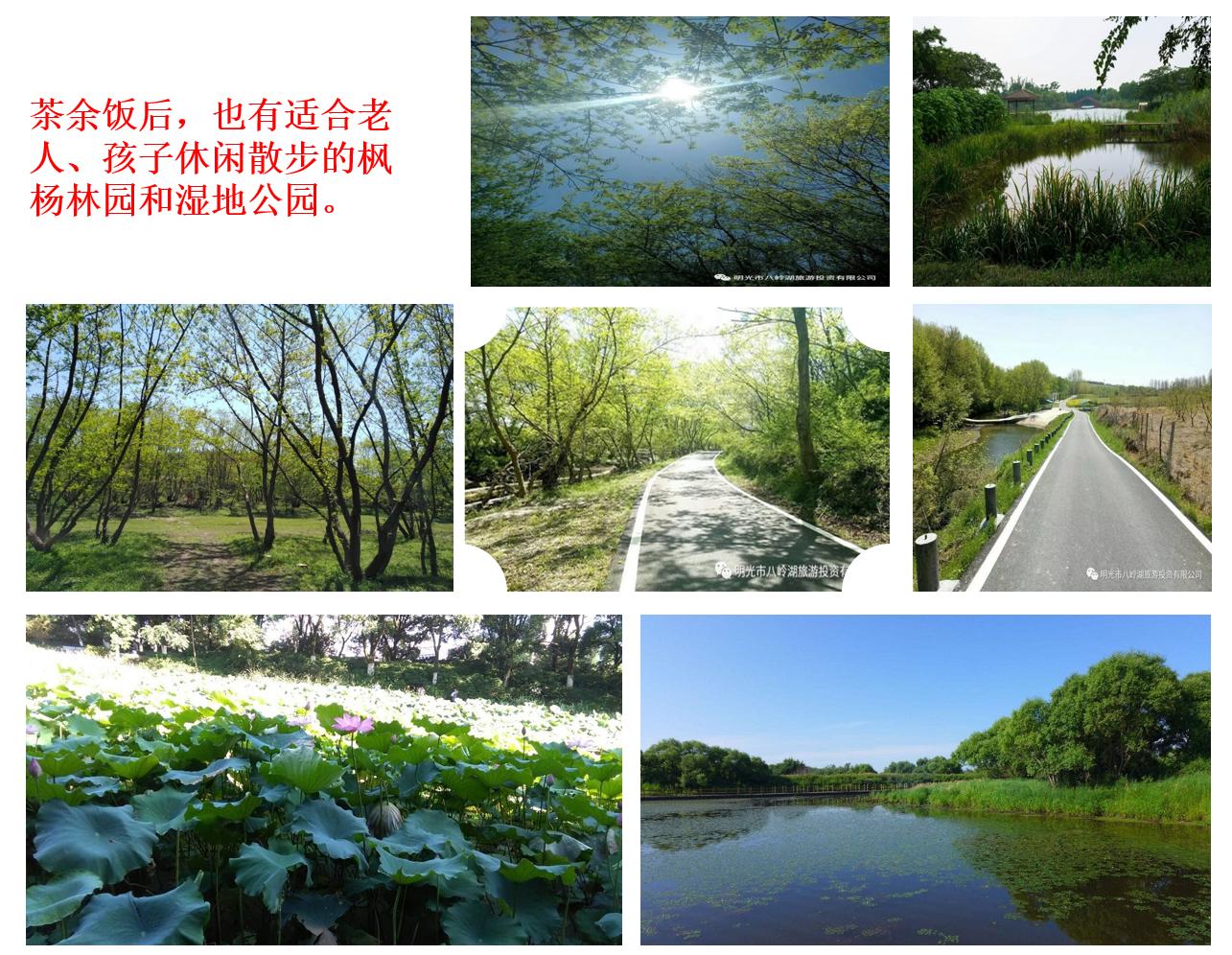 滁州八岭湖景区